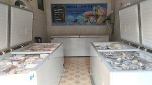 supplier fillet ikan beku (FIB) Yogyakarta